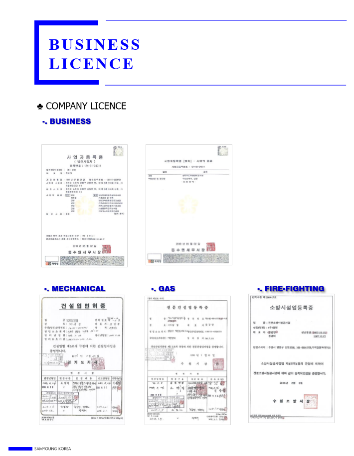 licence_1.PNG